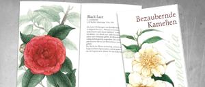 Broschüre Grafiker Sacshen, Werbeagentur